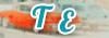 Un nouveau forum dérivé vient d'ouvrir ! - Page 6 Bouton_partenariat