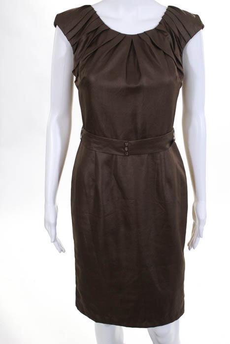 00b5ea61d45 Twelfth Street by Cynthia Vincent Brown Silk Blend Cap Sleeve Dress Size  Small