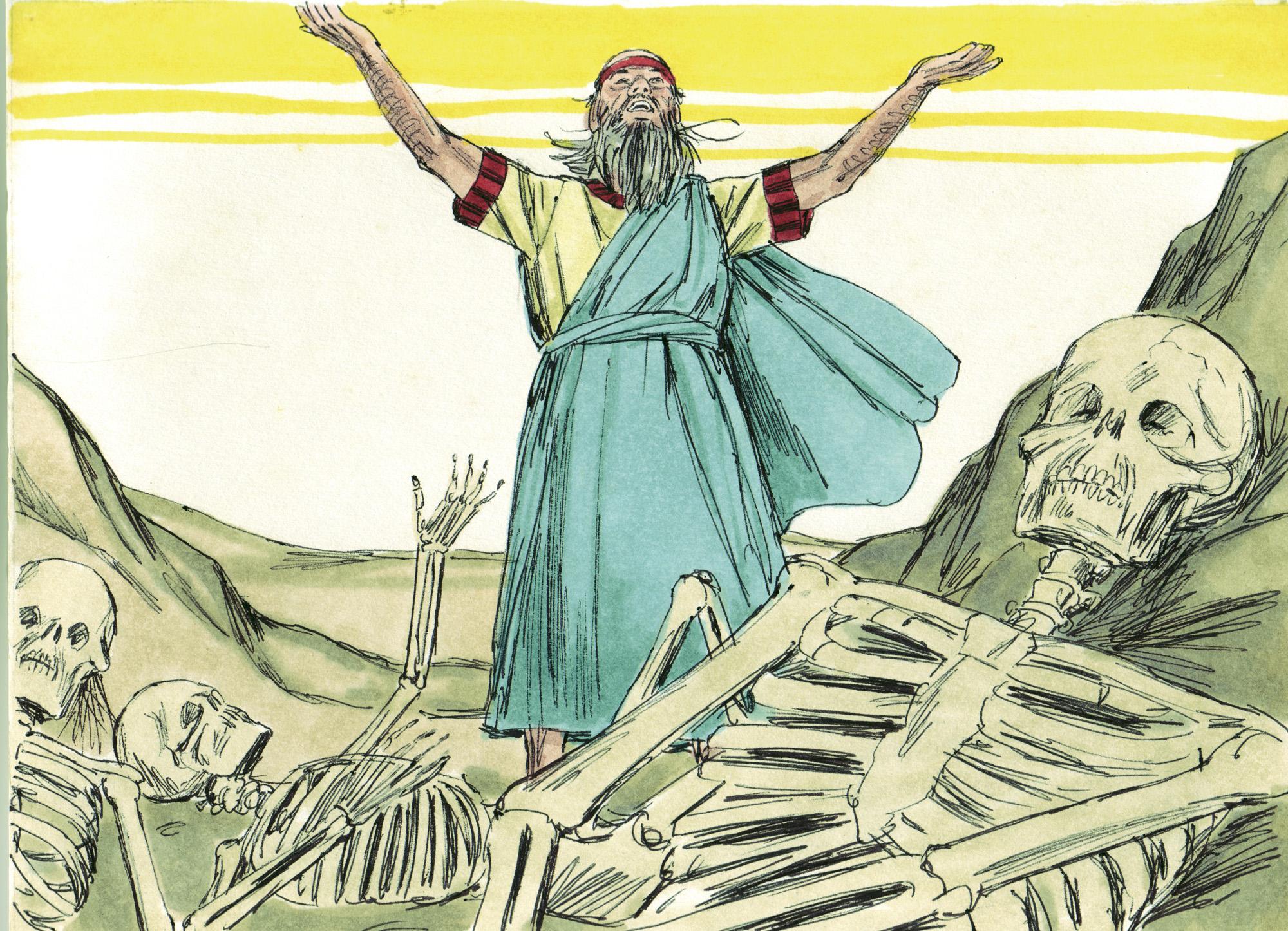 Bible Study Helps: Ezekiel and Daniel - CultureWatch