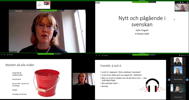 Онлайн-лекція Софії Тінґселль