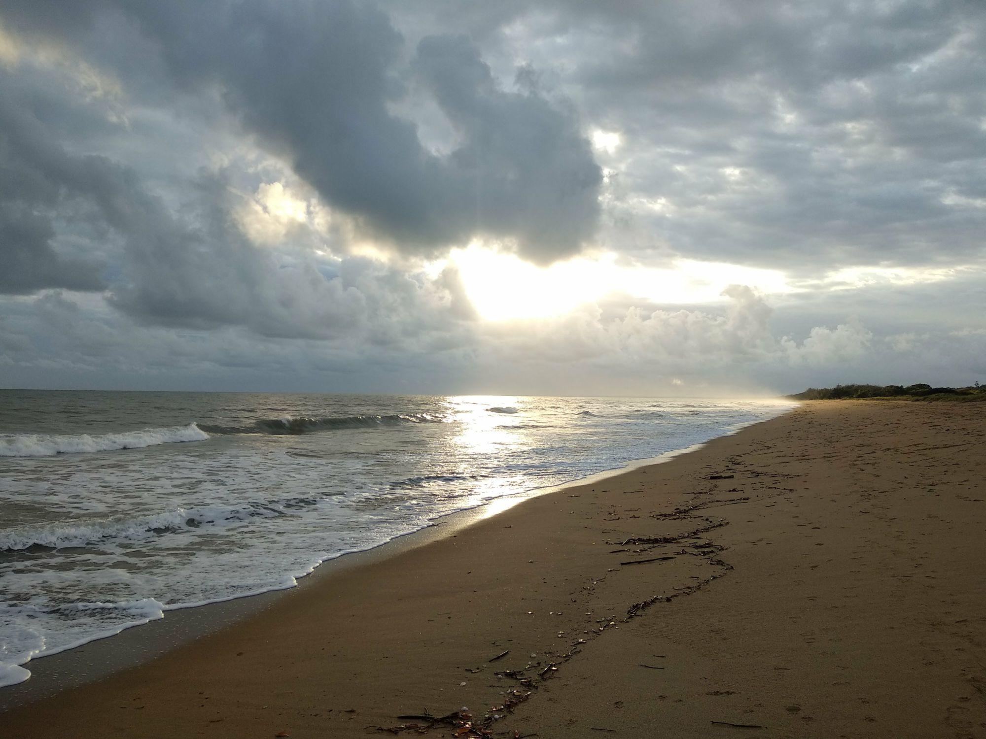 Moore Park Beach sunrise