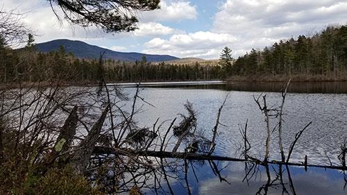 Lower Hall Pond, NH