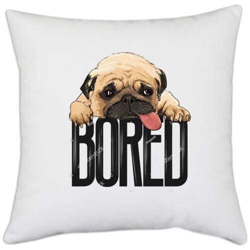 Pug   Pug Bored