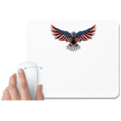 Bald Eagle | American Flag