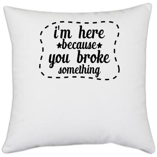 | i'm here because you broke something