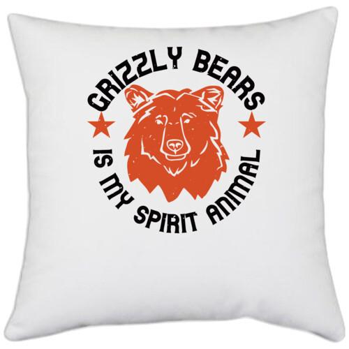 Winter, Bear   grizzly bears is my spirit animal